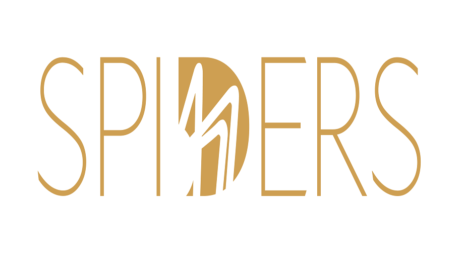 The Spider Awards 2019