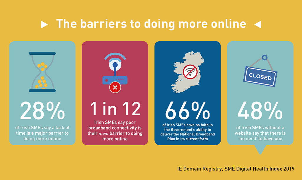 IE Domain Registry - SME Digital Health Index 2019 - Barriers to digital
