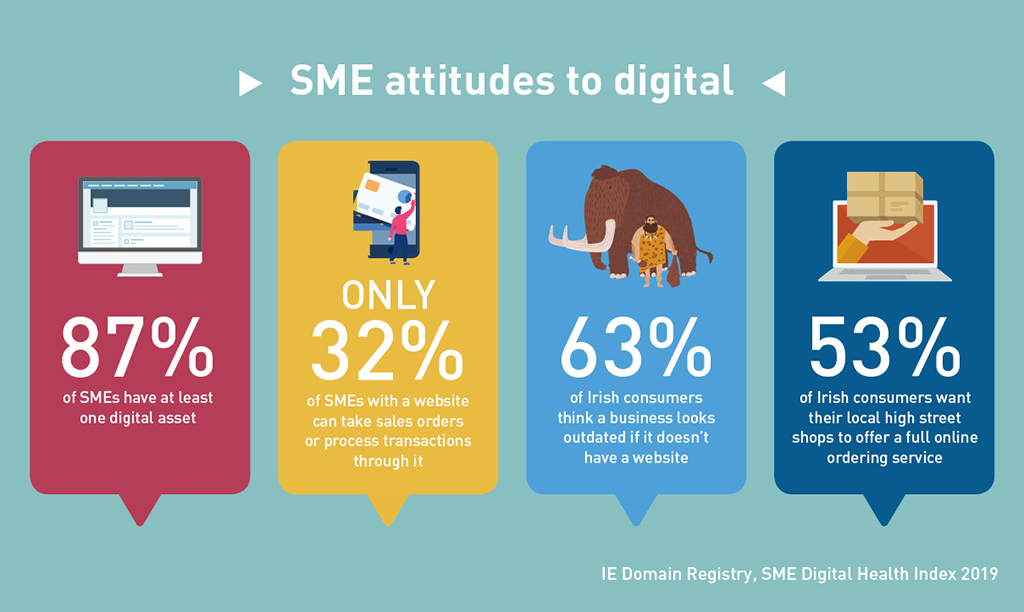 IE Domain Registry - SME Digital Health Index - SME attitudes to digital